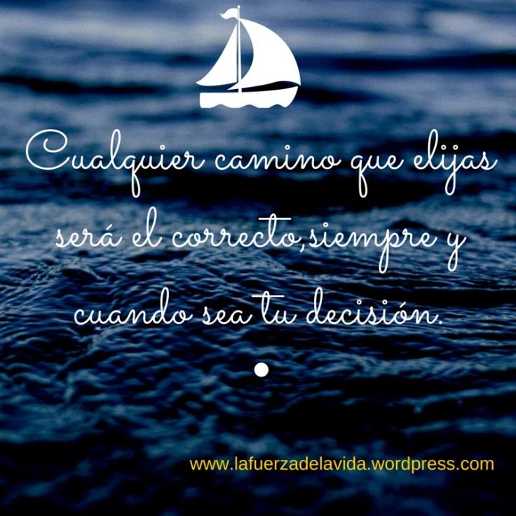 decision vida